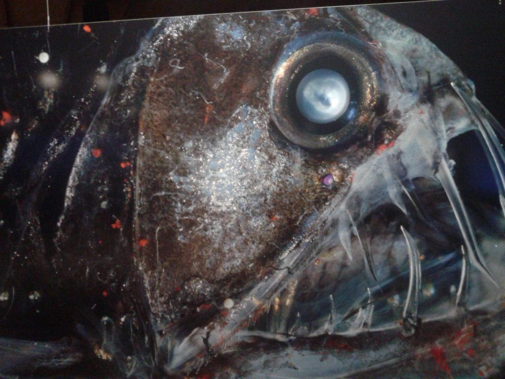 """Gesehen in der Ausstellung """"Welt der Wunder"""" im Oberhausener Gasometer: Aufnahme eines Fischkopfs. Foto: Grimm"""